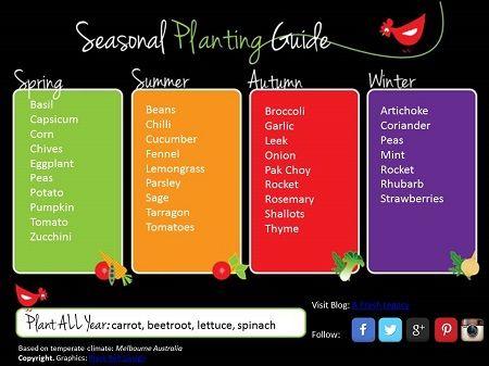 Seasonal planting guide vegetable vegetables growing veggies also gardening in cold weather pinterest rh