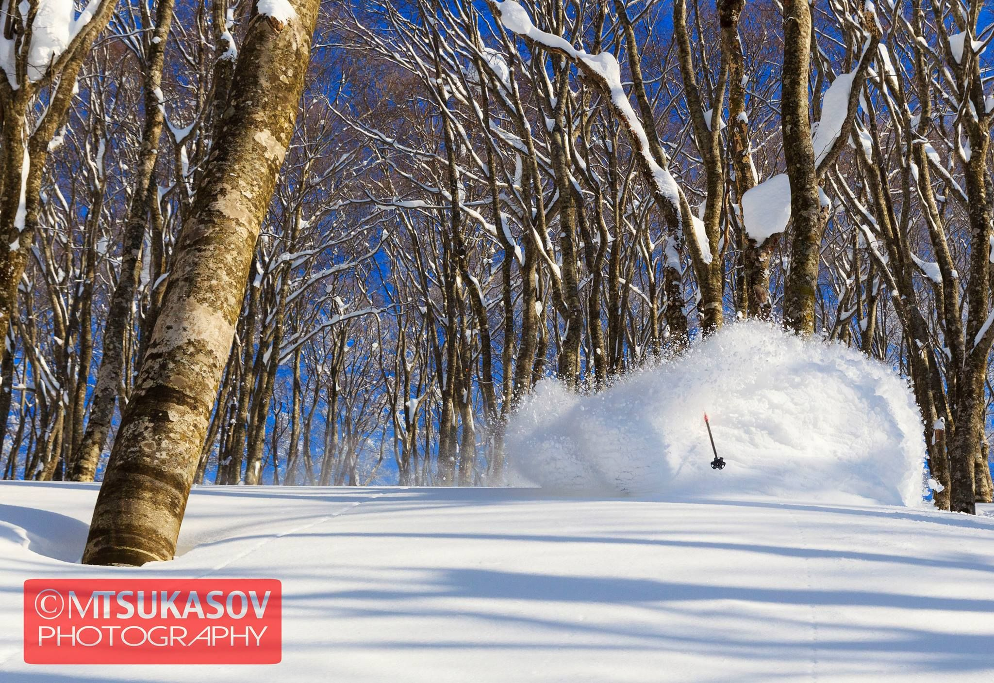 We have been offering Hakuba Backcountry Tours for more than 10 years, as well as running Avalanche Skills Training & Off-Piste Tours. Snow is our business.