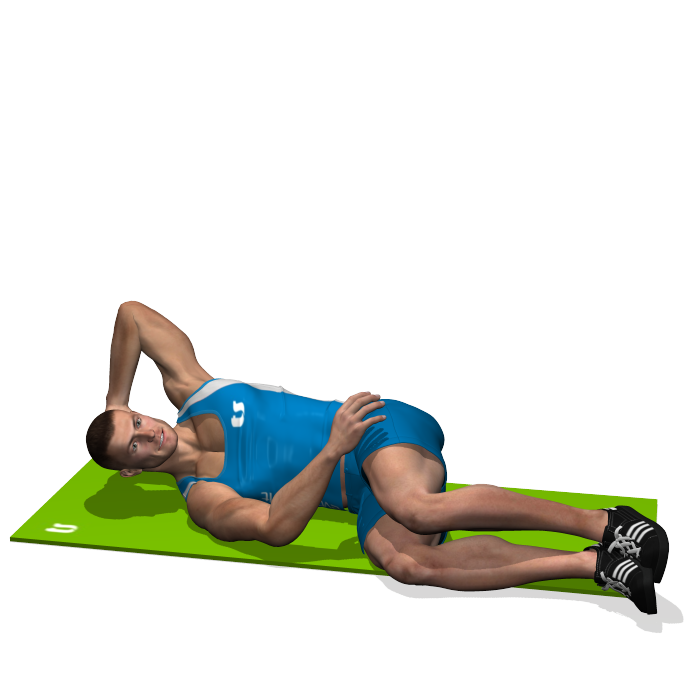 Oblique Crunches On The Floor Involved Muscles During The Training