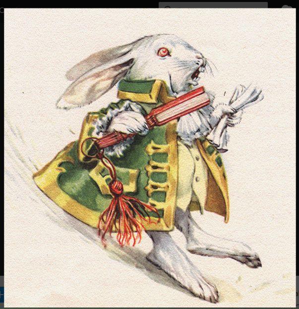 white rabbit by Maraja, 1958