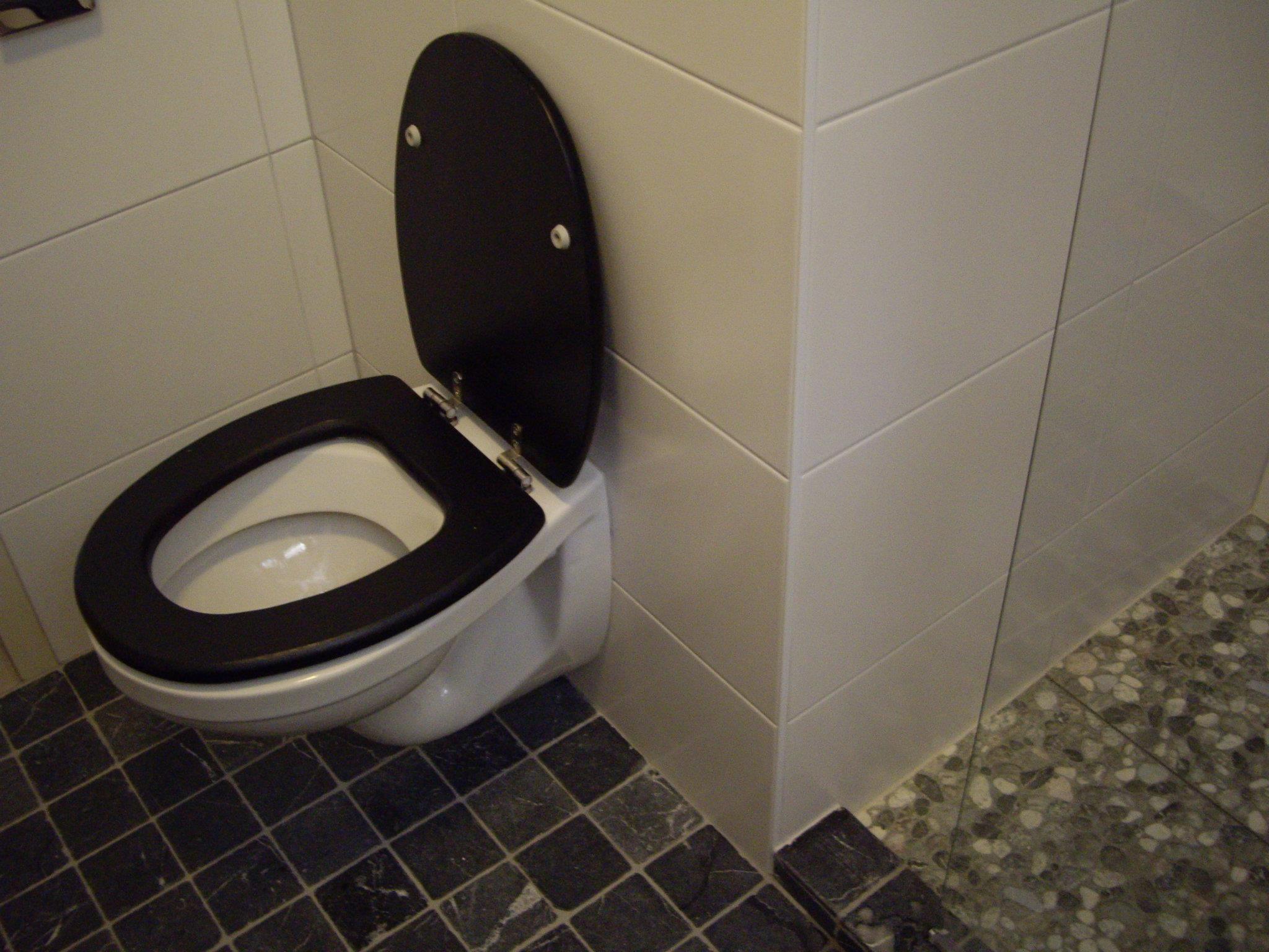 douche betegeld met zweef toilet badkamers pinterest