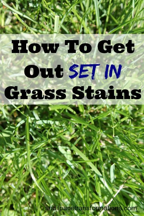 A Picture From Our Week Grass Stains Be Gone Snail Pace Transformations Grass Stains Grass Stain Remover Stain On Clothes