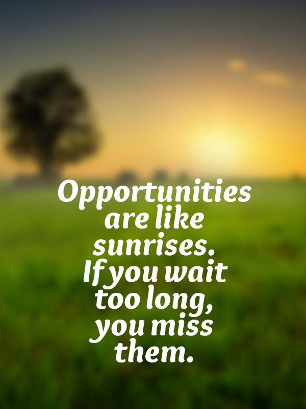 Opportunities Are Like Sunrises If You Wait Too Long You Miss Them