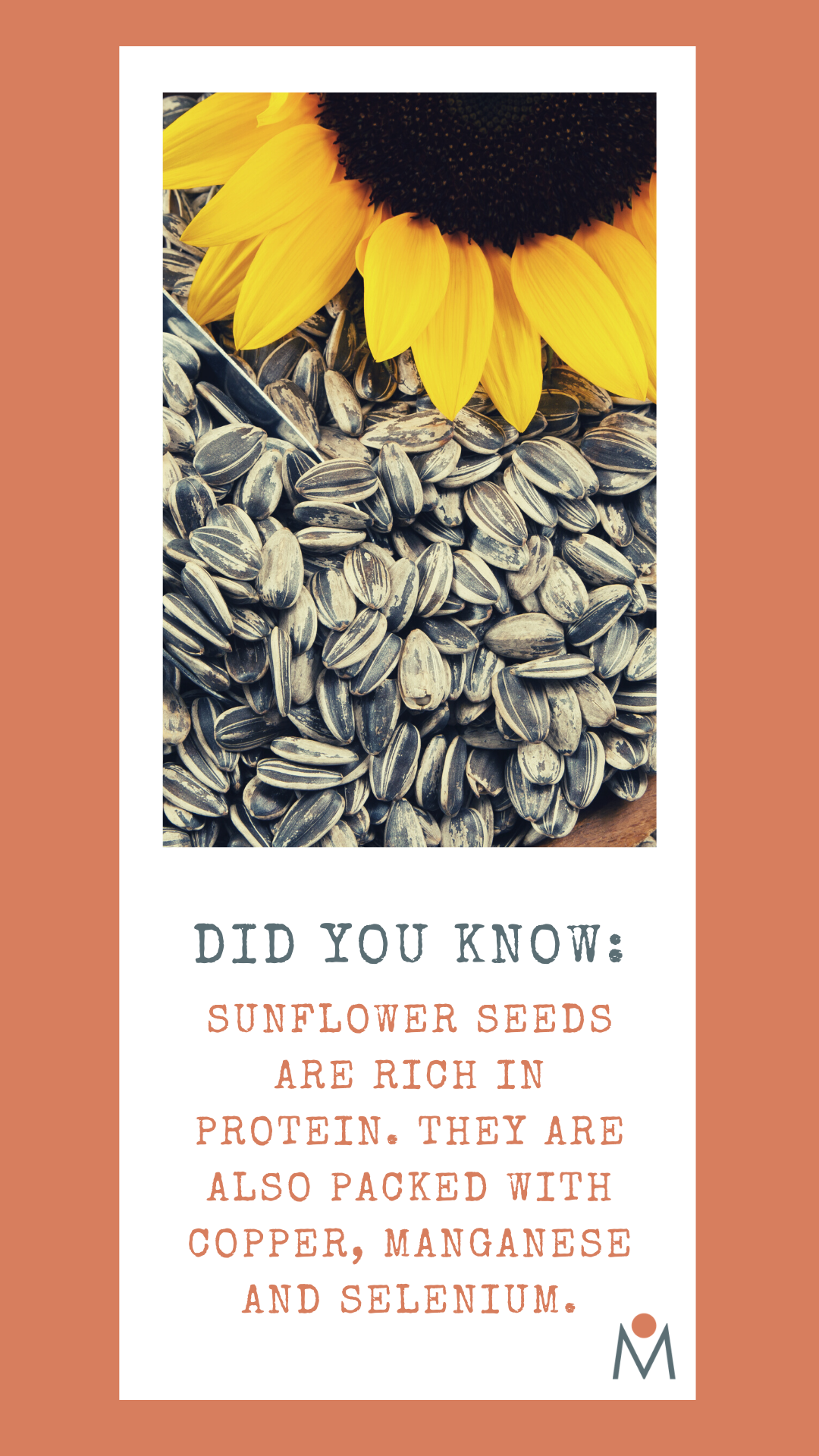 The Benefits Of Sunflower Seeds In 2020 Sunflower Seeds Benefits Healthy Living Inspiration Nutritional Therapy