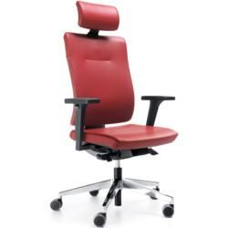 Photo of Executive chair Prm Xienon Ks selection color options