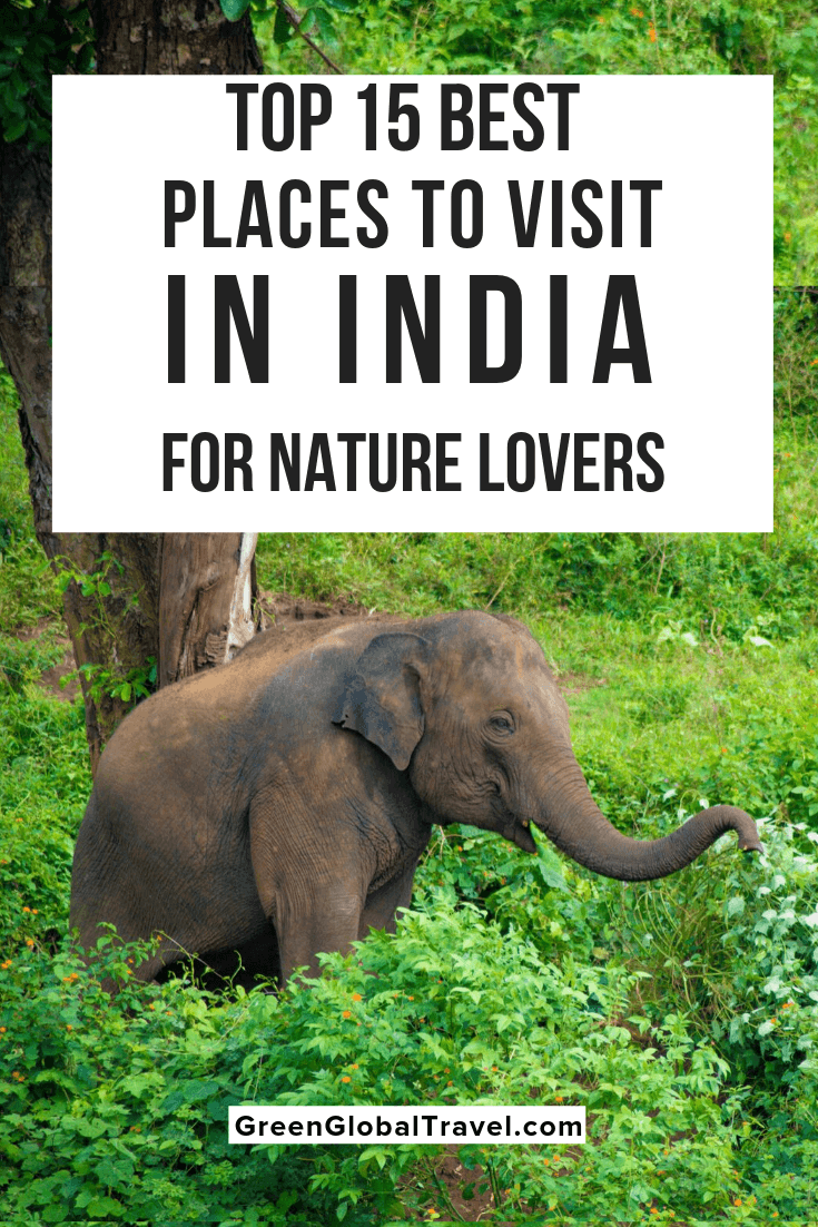 The 15 Best Places To Visit In India For Nature Lovers Cool Places To Visit Wildlife Travel Nature Lover
