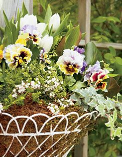 **Victorian Glory** ...trailing ivy, heather, painterly pansies, lily of the valley and white tulips