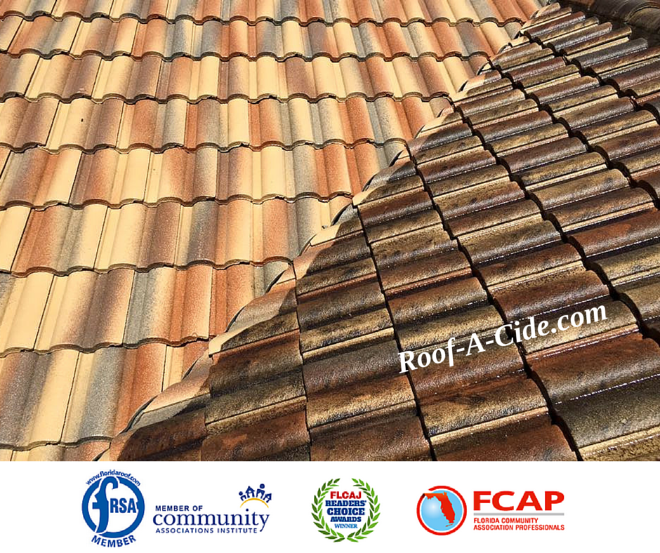 Roof A Cide Pic Of The Day Courtesy Of Mike Arnone At Pressure Perfection An Authorized Roof A Cide Applicato Roof Cleaning Roof Maintenance Broward County