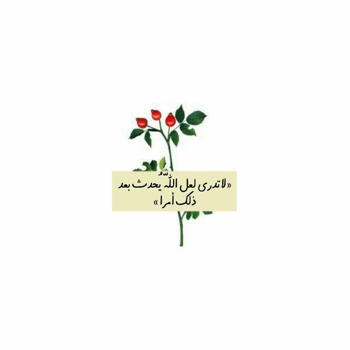 Pin On Islamic واثقه بربي