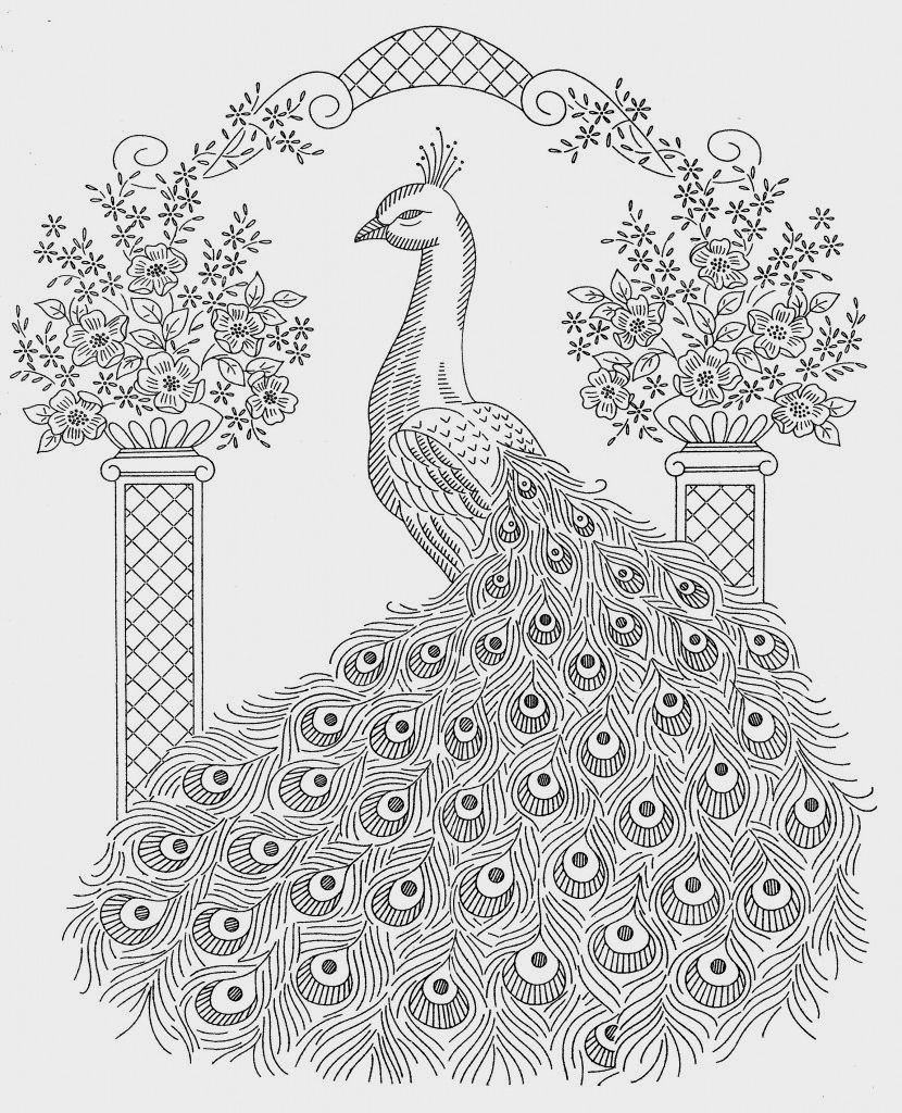 Peacock Coloring Pages For Kids | Coloring pages | Pinterest ...