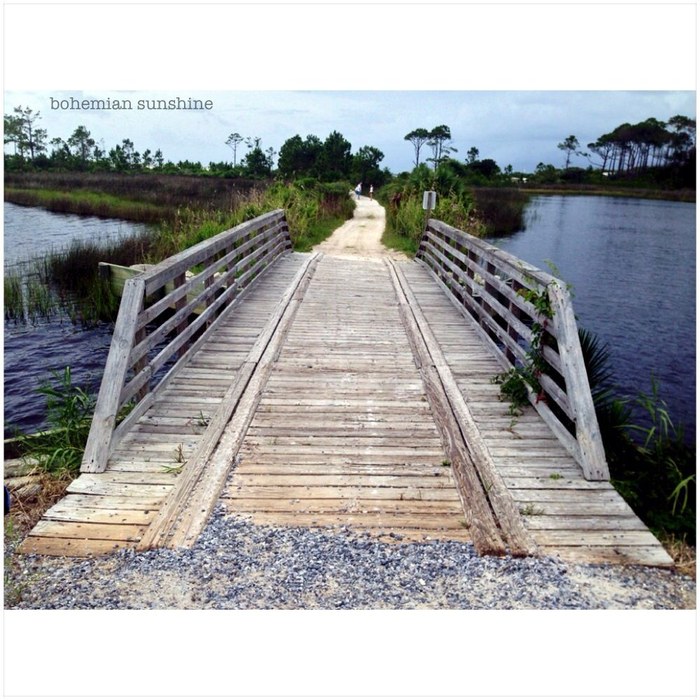 Trail To The Beach At Camp Helen State Park In Panama City