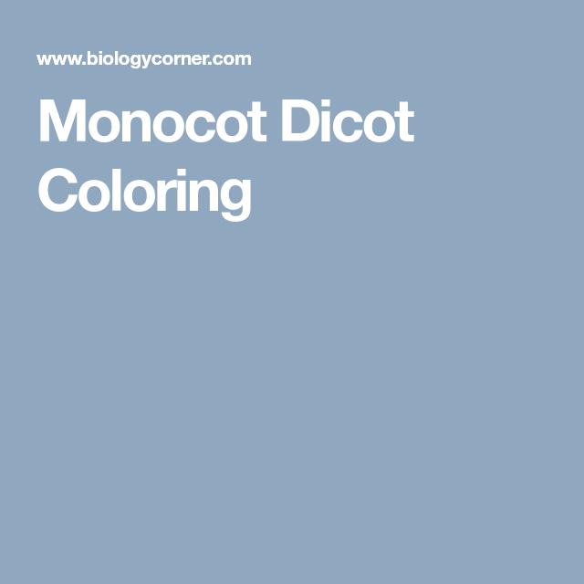 Monocot Dicot Coloring Biology This Week Pinterest Coloring