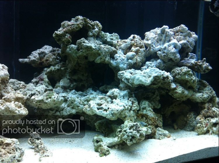 Aquascaping Show Your Skills Page 26 Reef Central Online Community Reef Tank Aquascaping Saltwater Aquarium Setup Saltwater Tank