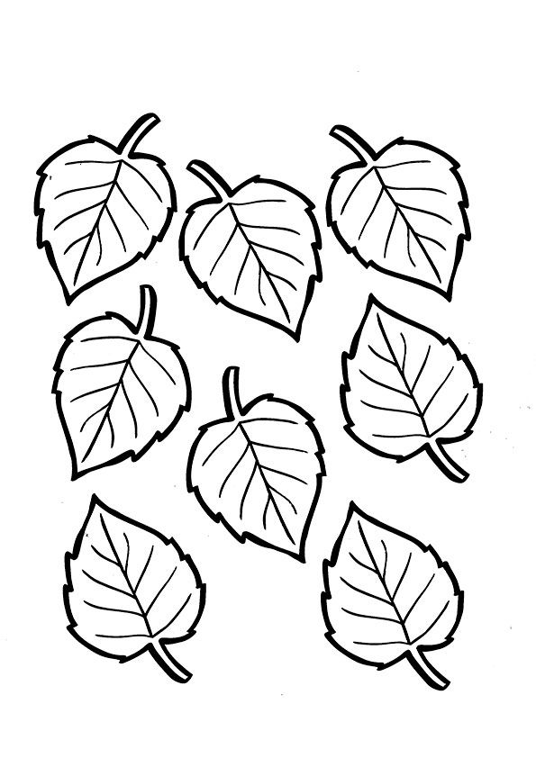 Birch Leaves Cut Out