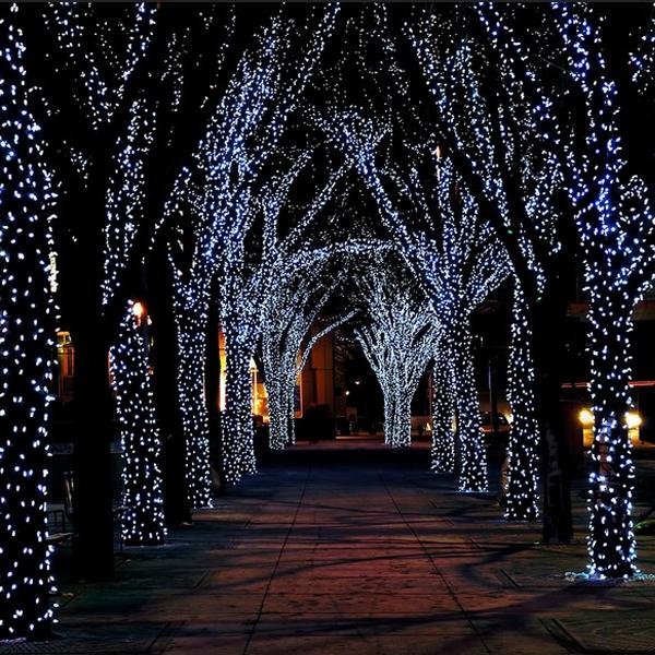 17-Meter String of 100 LED Solar-Powered Fairy Lights