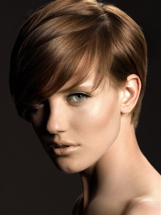 short brown straight coloured layered haircut