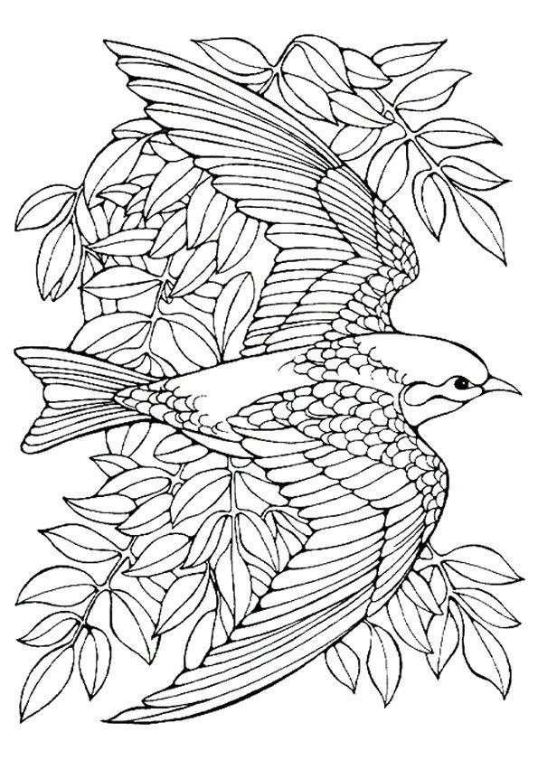 Pin By Carole Howington On Kleuren Bird Coloring Pages Mandala Coloring Pages Animal Coloring Pages
