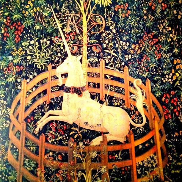Unicorn Tapestry - @jeffreynyc