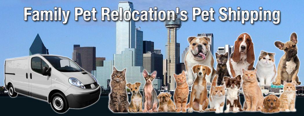 Pet Relocation Pet Travel Pet Shipping Pet