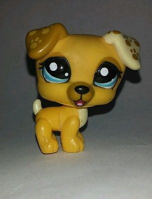 Littlest Pet Shop Yellow Jack Russell Dog Blue Eyes Paws Ears #1496 Preowned