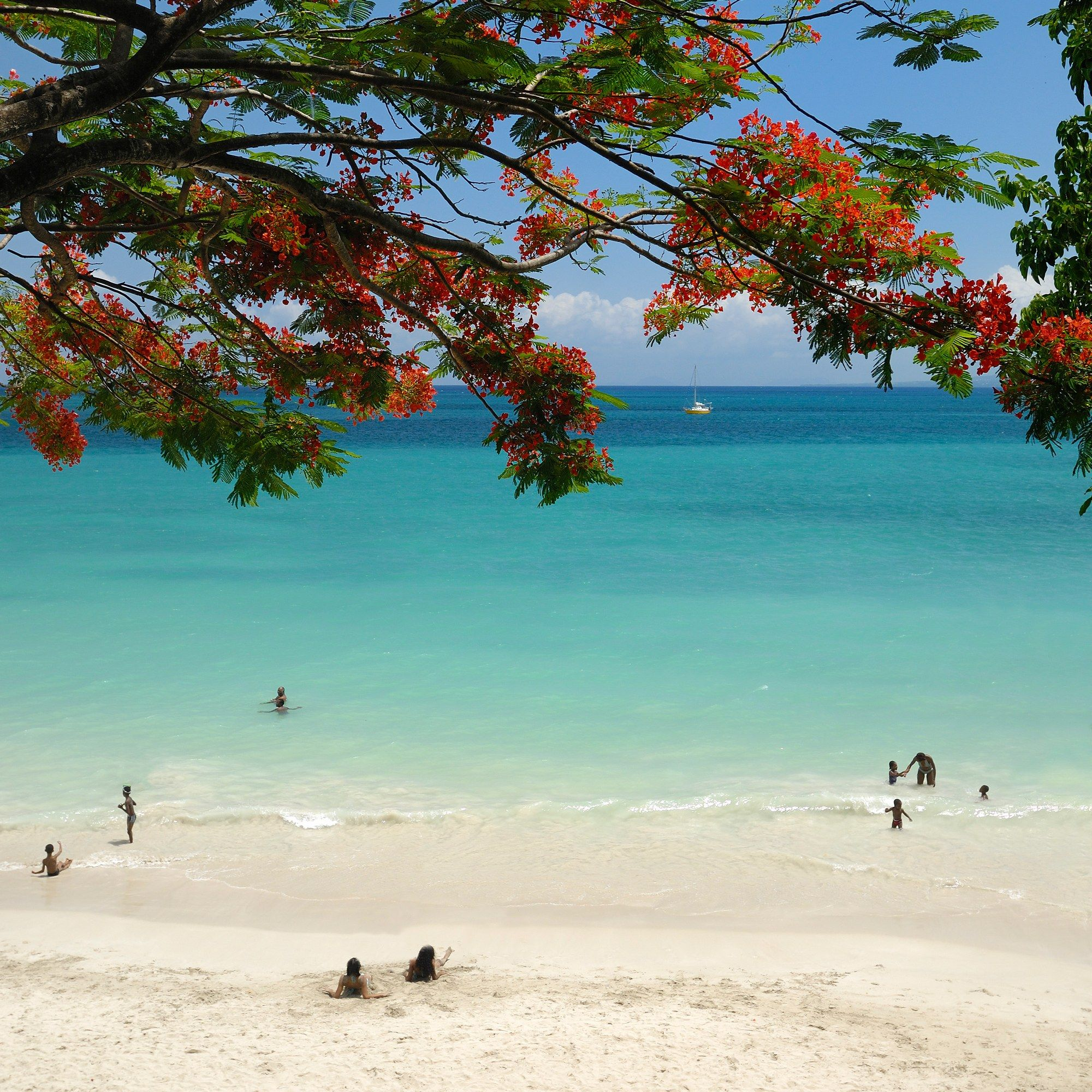 Guadeloupe Beach: Skip Paris And Practice Your French While Island-Hopping