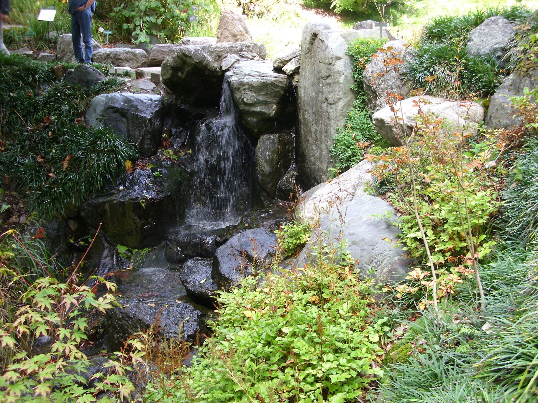 UC Botanical Garden at Berkeley Were pleased to report that we