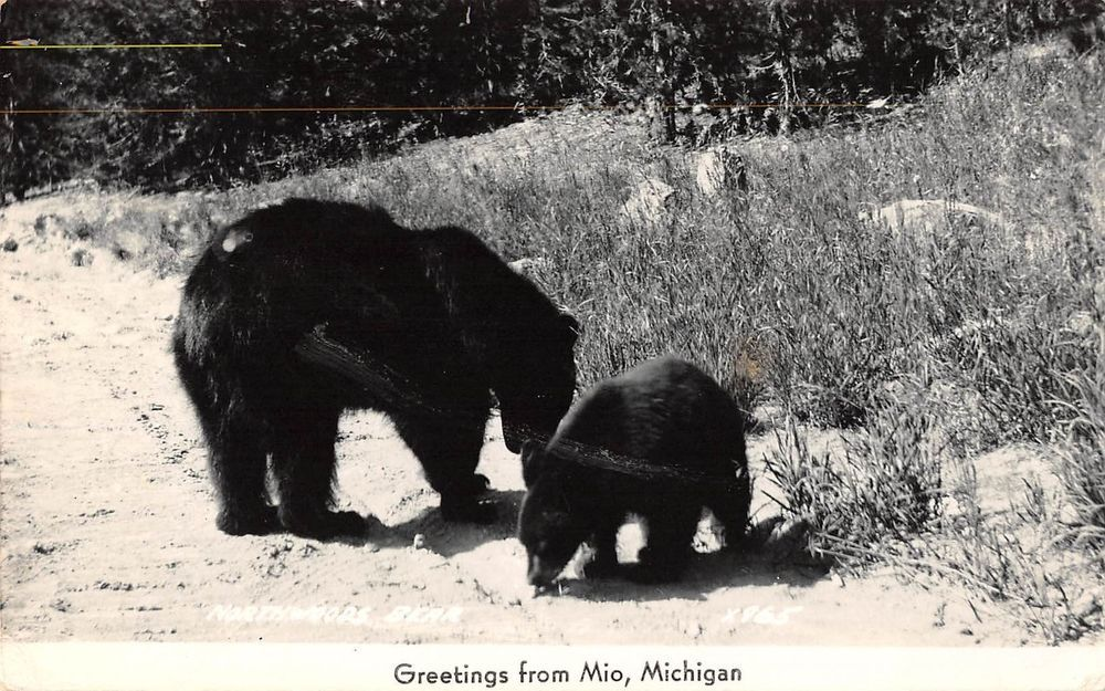 Pin On Michigan History Legends And Folklore