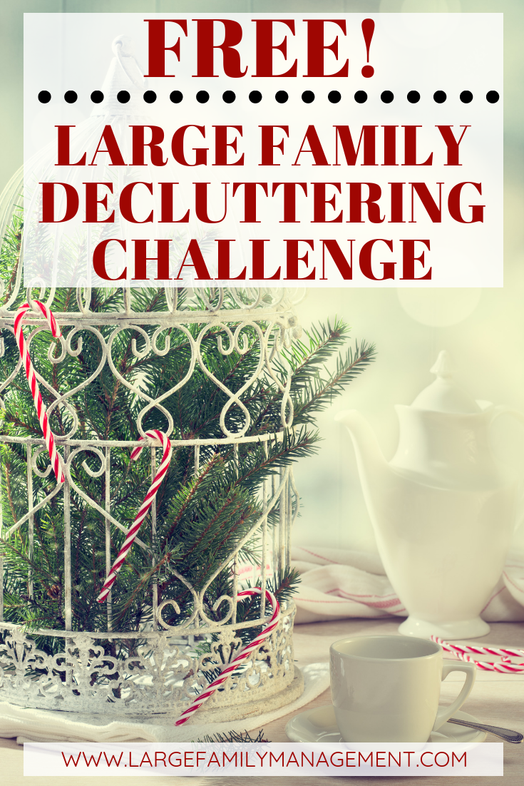 Successful Large Family Decluttering Made Unbelievably Simple Management
