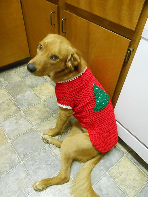 Ravelry: Project Gallery for Crocheted Dog Sweater pattern by vahnee ...