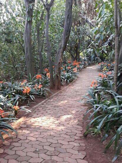 Pretoria National Botanical Garden National Botanical Gardens Botanical Gardens Pretoria