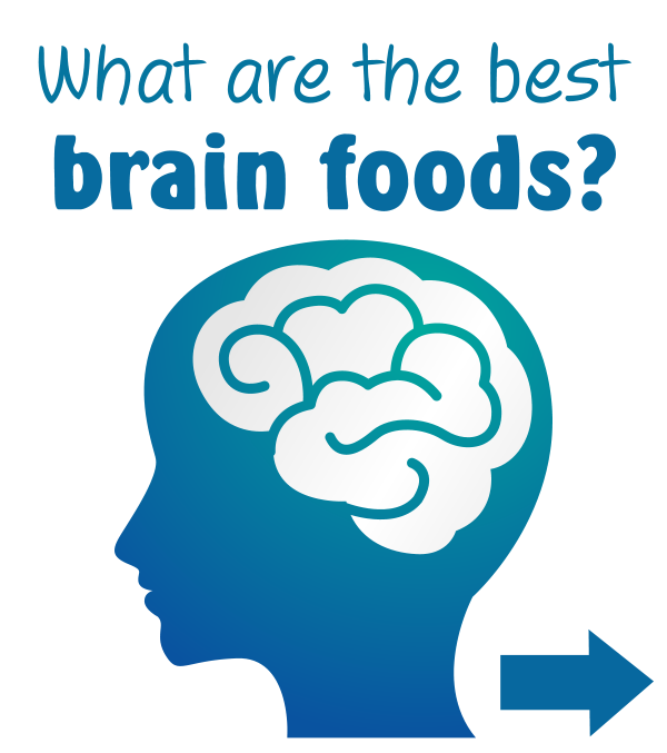 WHAT ARE THE BEST BRAIN FOODS? Find out how to nourish your brain through your diet, in our latest blog post! #brain #memory