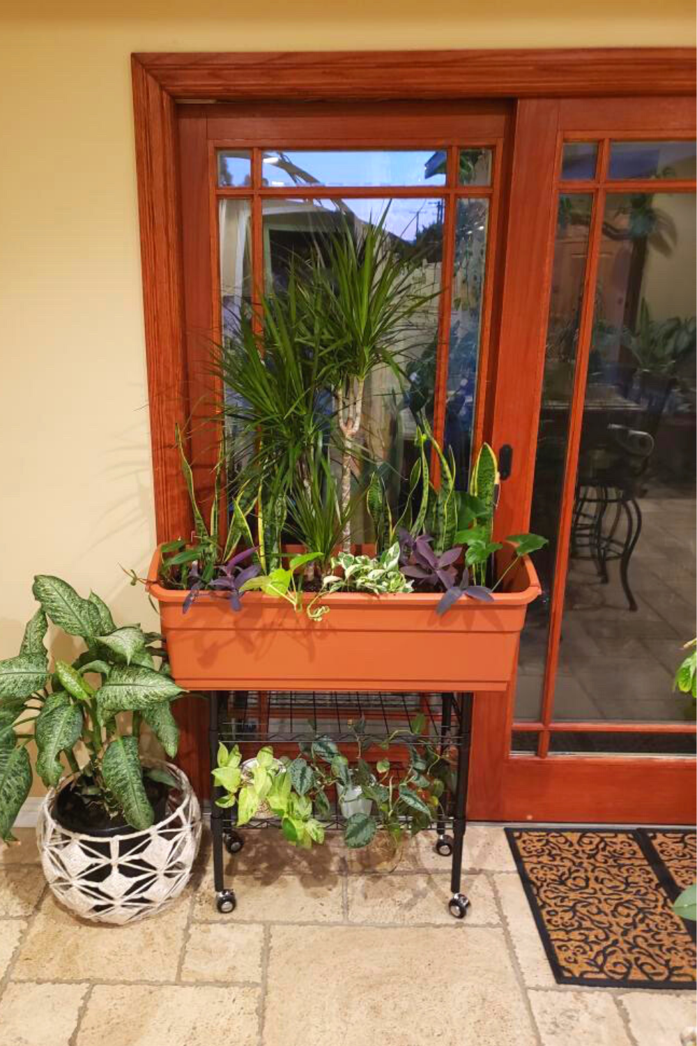 While we might enjoy the cold weather sipping hot cocoa, our plants need some help and TLC from the harsh winds and snow. To keep growing your favorite greens, check out our blog today. Watex planters are your friend for indoor planters, small space gardening. 💚 Head to the blog today to find out more options for your winter gardening needs. Link in bio 👆🏻 💚 👩🌾 🍂 #blog #wednesday #gardenblog #indoorgarden #smallspacegardening #urbangarden #gardenbed #watex