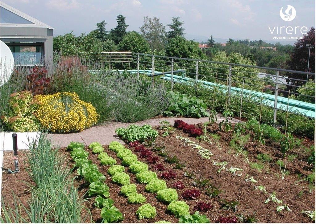 se non hai a disposizione un terreno e nemmeno un piccolo giardino ... - Piccolo Giardino Sul Balcone