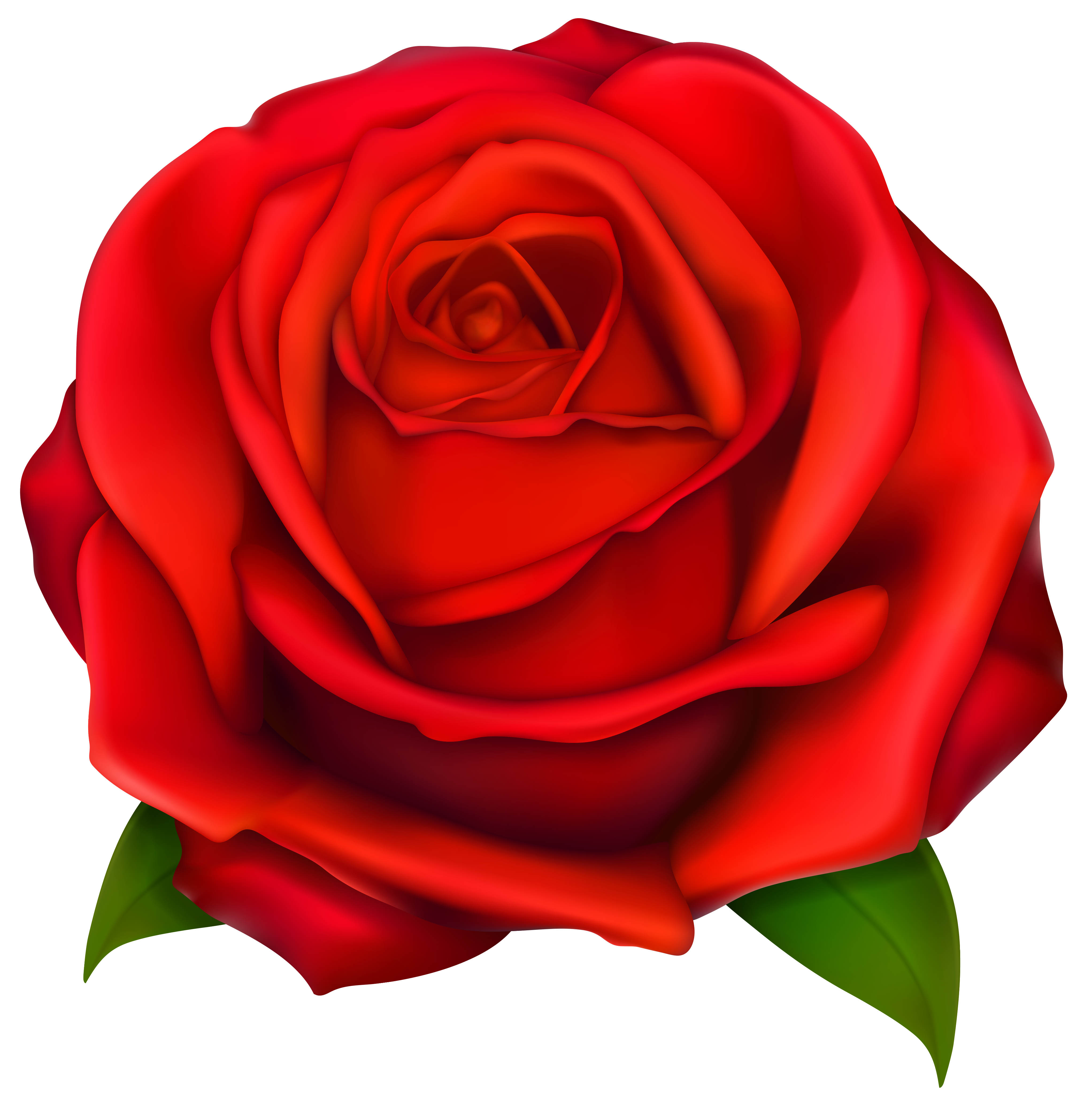 clip art red rose #7092