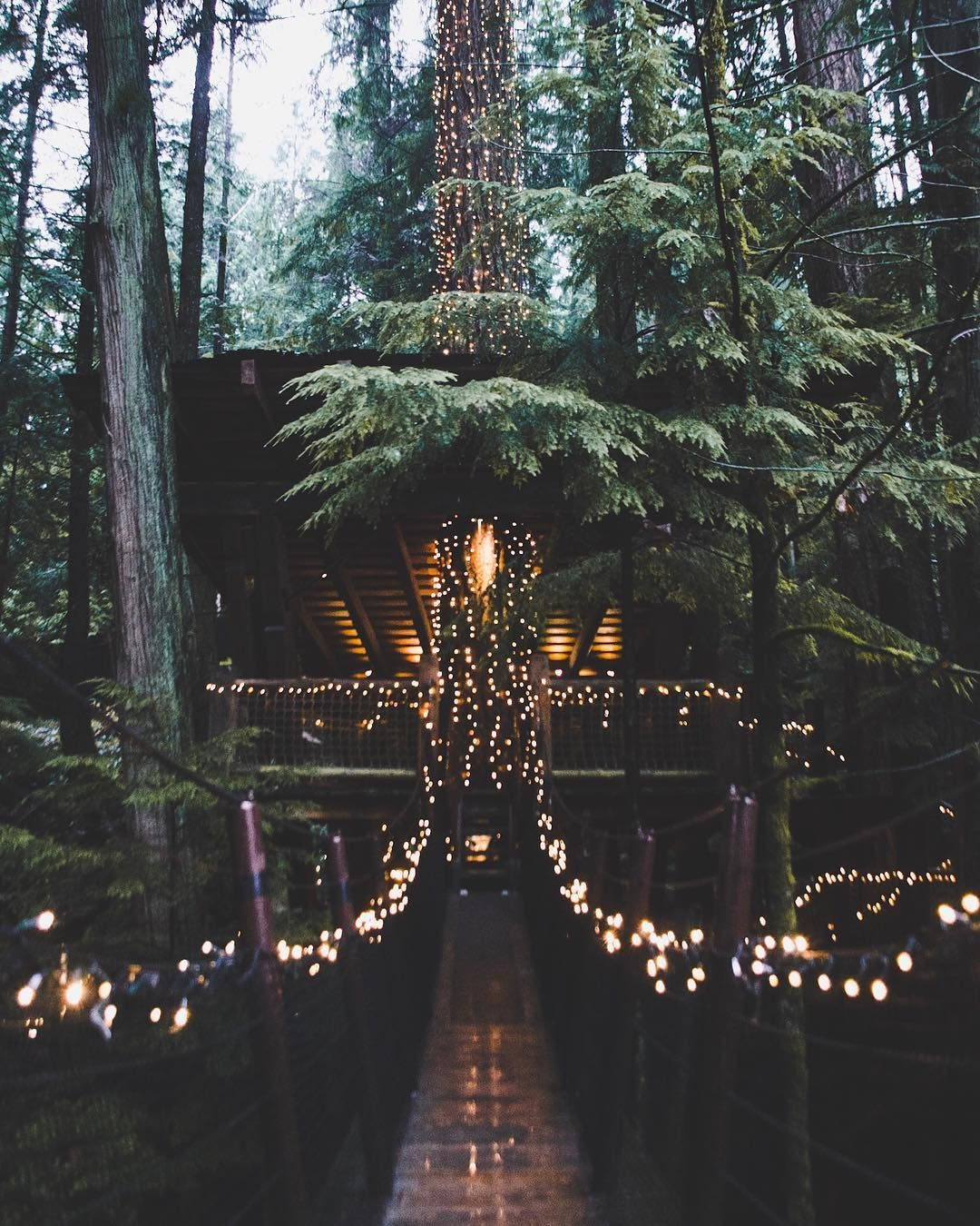 """1,319 Likes, 40 Comments - Cole Lundberg ╳ The Stoked (@cole.lundberg) on Instagram: """"One of my favourite things in Van is capilano and especially when the canyon lights are on! What…"""""""