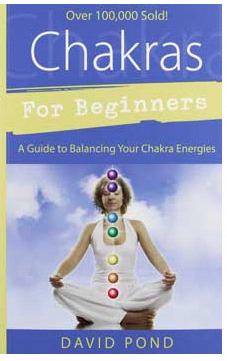 chakras for beginnersdavid pond reikiforbeginners