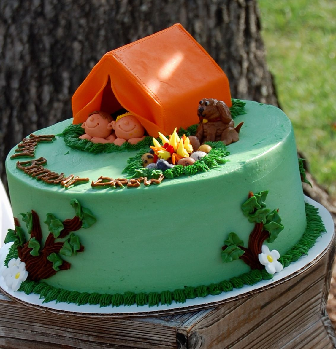 summer camp birthday party ideas camping cakes cake and birthdays