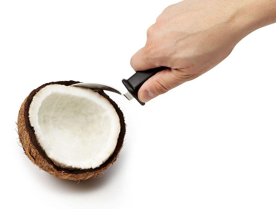 Fruitensil, para sacar la pulpa del coco fresco | Coco, Utensilios y ...