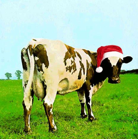 Have a Pink Floyd Christmas | Dangerous Minds