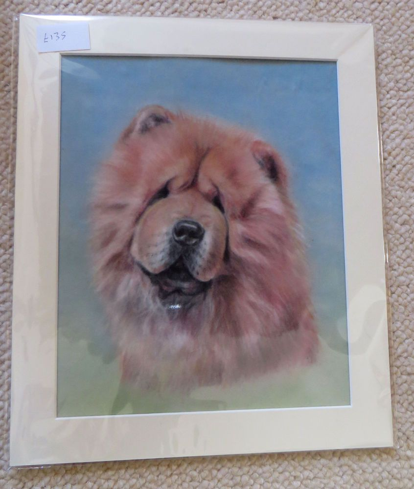 Chinese Chow Chow Original Pastel Painting Pet Dog Portrait Art 10