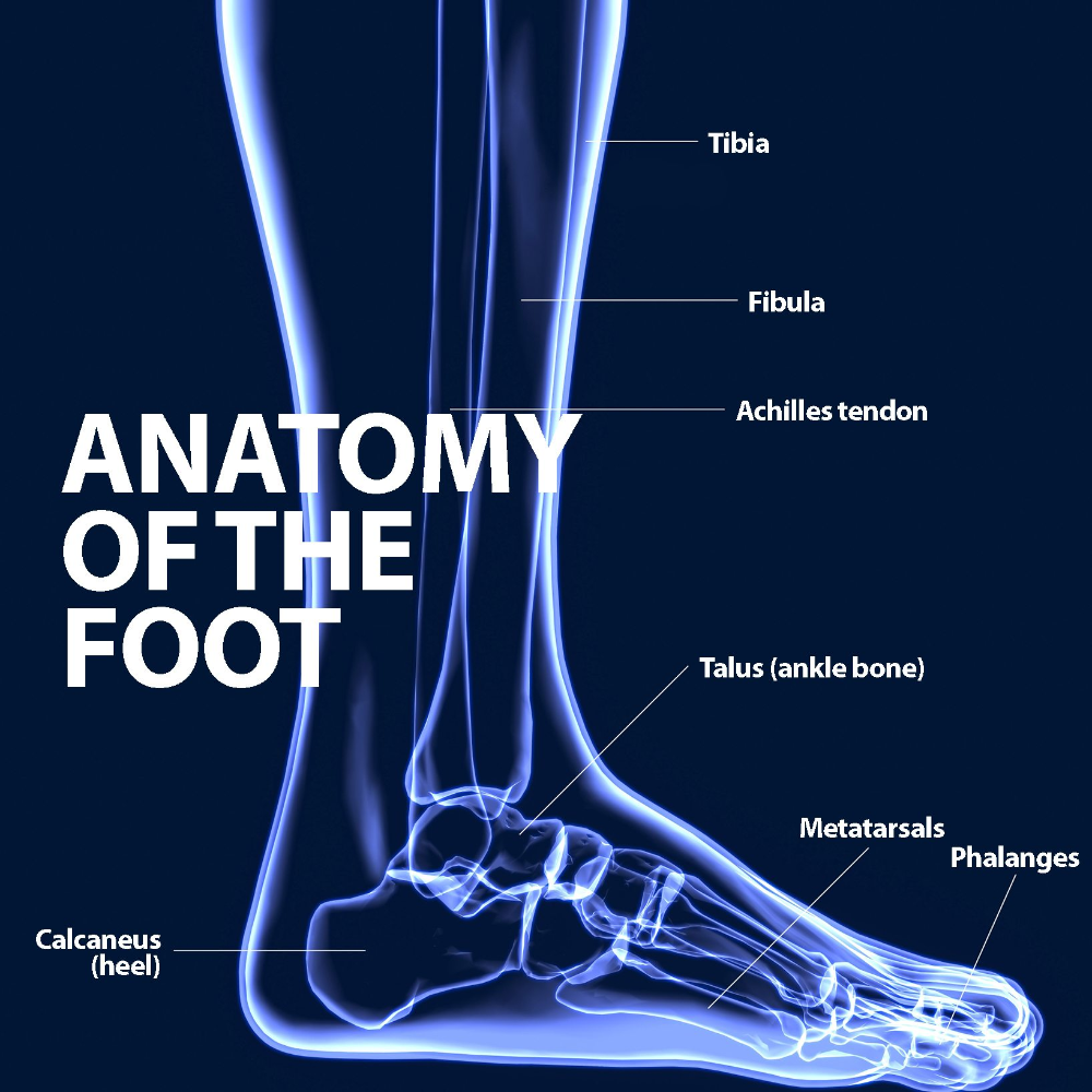 Ankle Fusion Ankle arthritis, Ankle, Ankle replacement