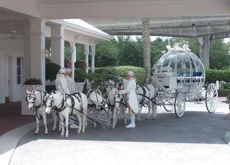 Disney wedding theme image by skip hurst on beautiful