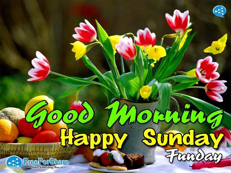 Image result for Happy Sunday with Spring flowers
