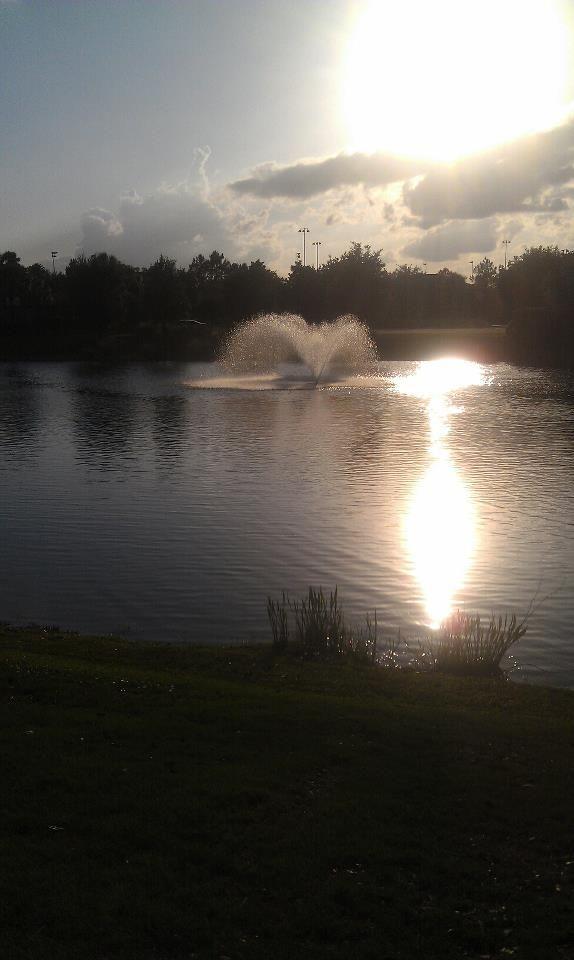 Orange Lake Resort Was Absolutely Beautiful.