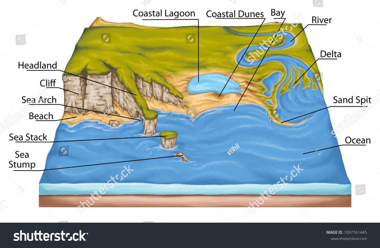 Types Of Continental Landform Coastal Landforms Coastal