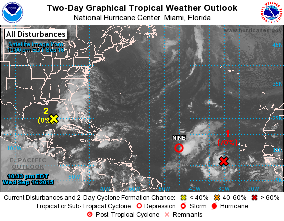 Well this is interesting (With images) Tropical
