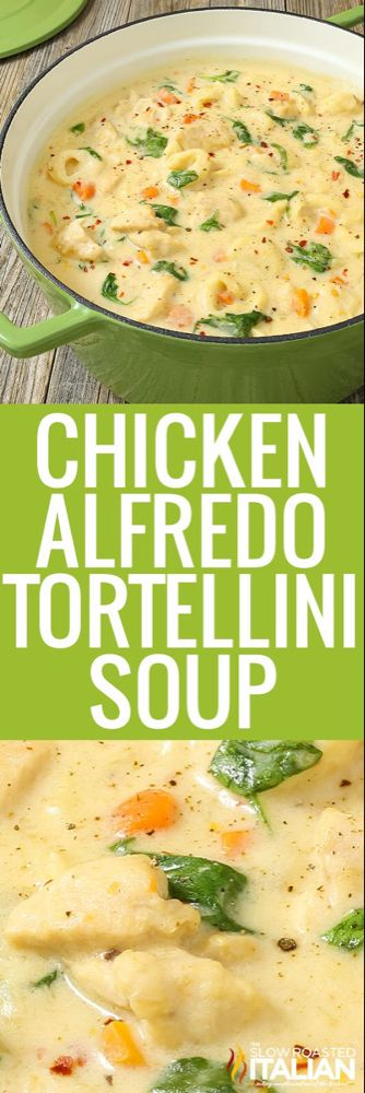 Chicken Alfredo Tortellini Soup (With VIDEO) #chickenalfredo