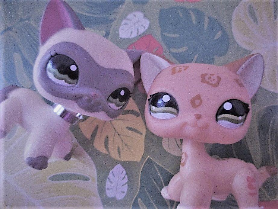 LPS Shorthaircats (Tylor & Alexandra)