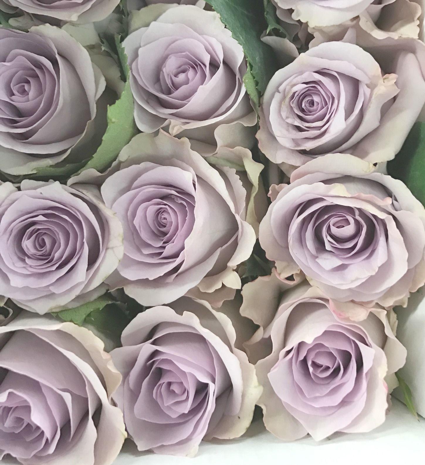 Names Of Purple Flowers For Wedding: Flower Names, Light Purple