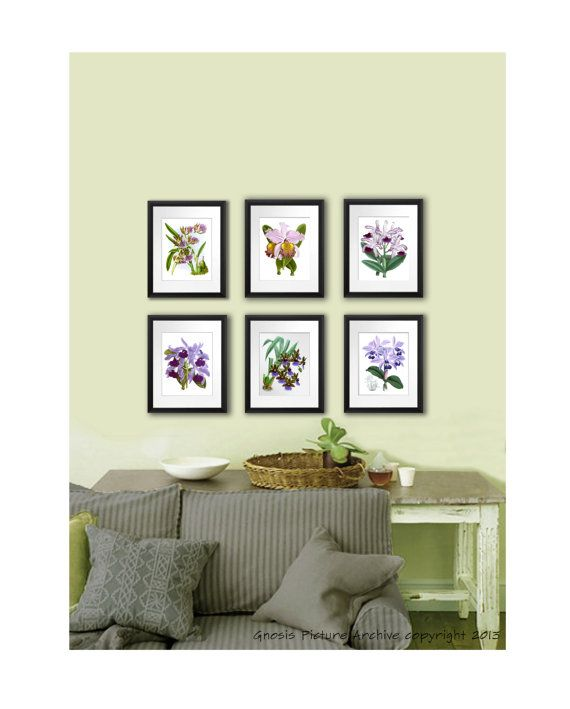 Orchid plants botanical art set of purple violet prints tropical hawaiian decor wall also antique print no rh pinterest